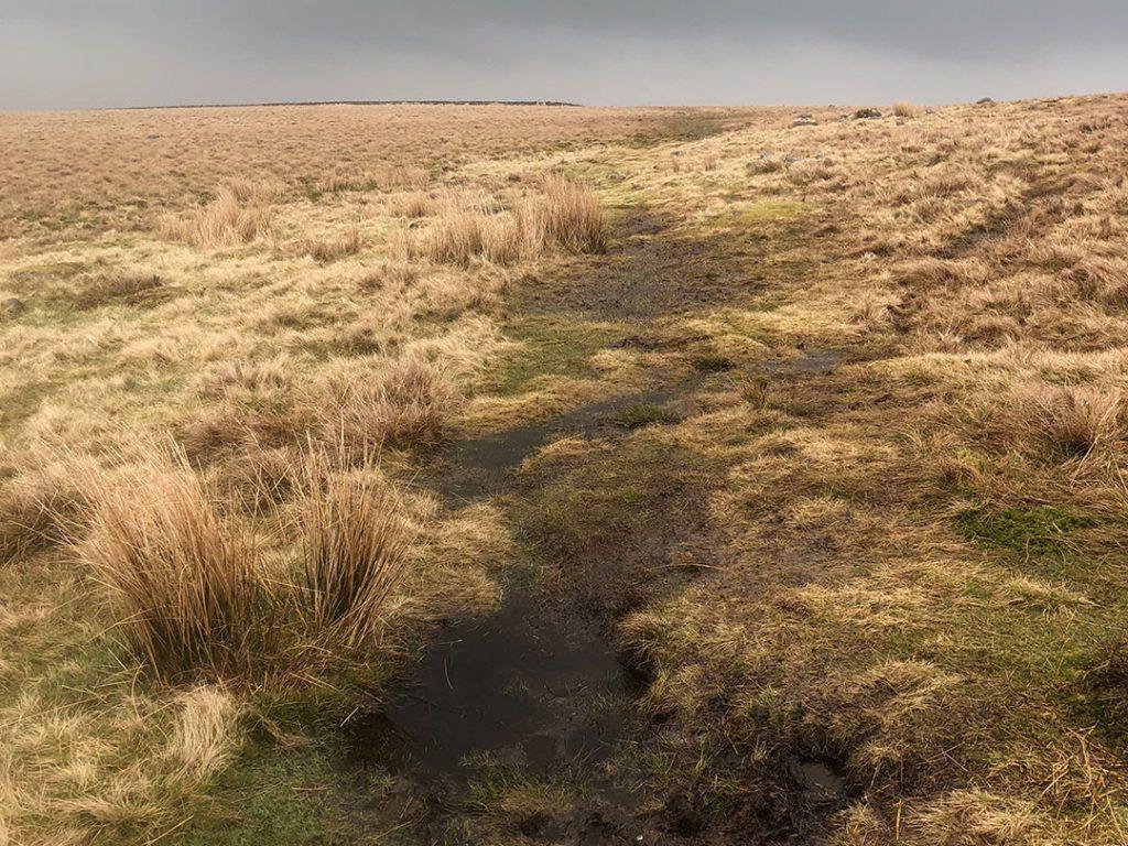 Rud Hill Boggy Terrain