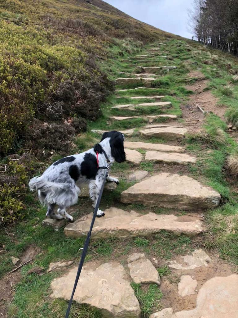 Heading-up-the-zig-zag-footbpath-from-Edale