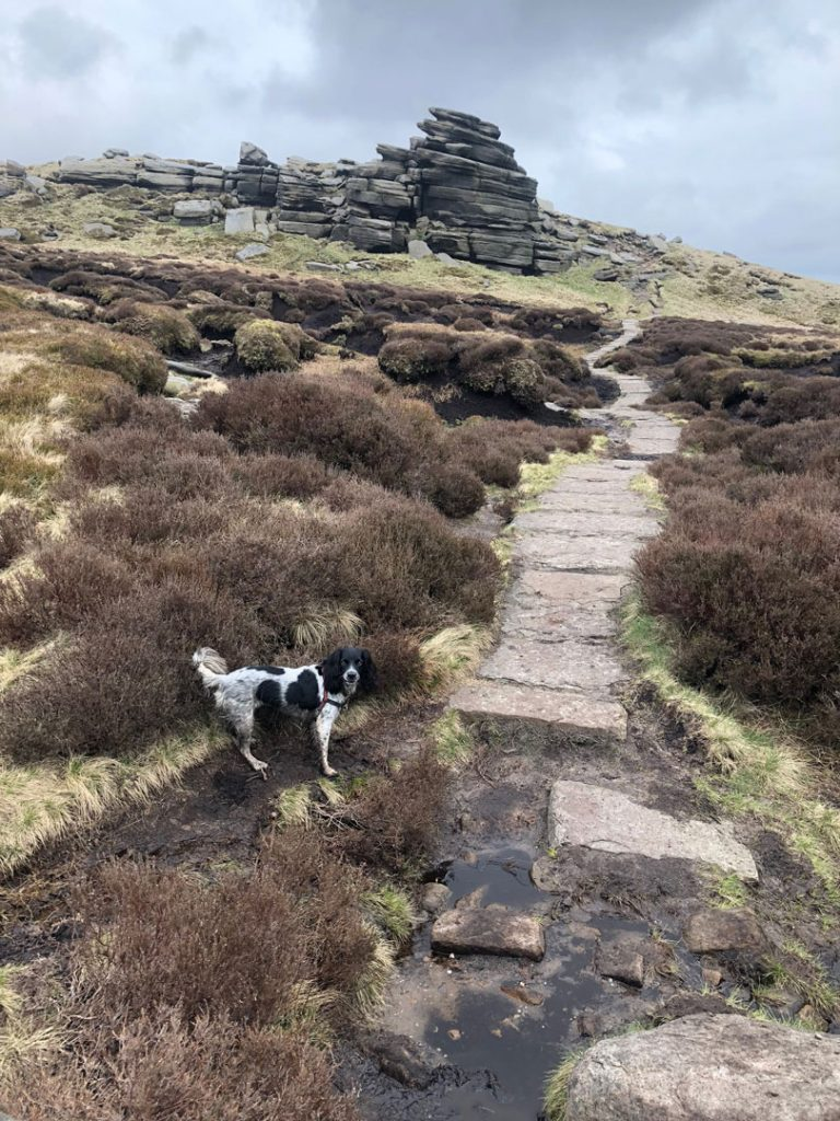 Escaping-the-Wool-Packs-Edale-Skyline